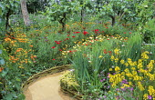 Path with woven willow edging, grapevines, wildflowers, Eschscholzia californica, poppies