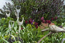 Recycled tool handles, Tulipa 'Jan Reus', hebe