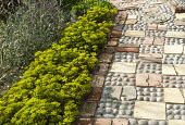 Euphorbia cyparissias and reclaimed brick edging cobble, tile and rope path