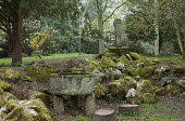 Stone trough water basin, monument, moss