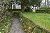 Moss-covered stone wall with wild primroses, gravel path