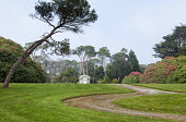 Path across lawn to Edwardian summerhouse, Scots pines, rhododendrons