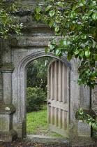 View through stone arch into walled garden, Tea plants, Camellia sinensis, wooden gate