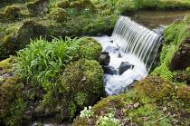 Waterfall, moss-covered rocks