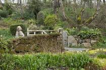 Woodland garden, gate, stone walls