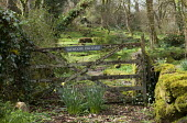 Rustic gate leading to orchard