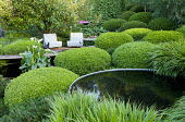 Clipped domes of box, contemporary chairs on terrace, circular pool, Zantedeschia aethiopica