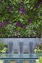 Living green wall, Begonia rex 'Escargot', Epimedium rubrum, Tiarella 'Ninja', Lamium 'Beacon Silver', viola, water fountains