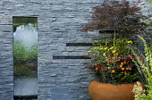 Solar panels and water fountain in slate wall, Acer palmatum in container underplanted with Geum 'Prinses Juliana', Achillea 'Moonshine', Ophiopogon planiscapus 'Nigrescens'