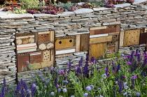 Sempervivums planted in dry-stone wall with wildlife habitats, Salvia nemorosa, knautia, insect hotel