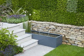 Water trough and fountains in dry-stone wall in sunken garden, living green heather wall