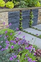 Stone and slate wall, Erysimum 'Bowles' Mauve'