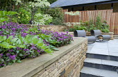 Terraced garden, dry-stone wall, contemporary chairs on patio, paving, lamium