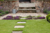 Brick patio, thyme in paving cracks, stepping stones across lawn