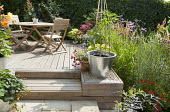 Wooden table and chairs on patio,  Cucumber 'Fernspot' and Fuchsia 'Eva Boerg' in containers, Verbena bonariensis