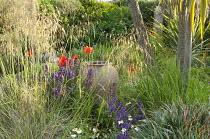 Gravel garden, terracotta urn, Stipa gigantea, Papaver orientale, Salvia farinacea 'Victoria'