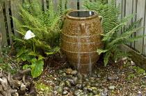 Urn water feature in shady corner, pebbles, ferns, Zantedeschia aethiopica