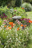 Staddle stone in border, Sweet William, poppies, geraniums