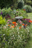 Staddle stone in border, Sweet William, poppies, hardy geraniums, echinops