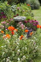 Staddle stone in border, Sweet William, Papaver orientale, Papaver orientale 'Patty's Plum', hardy geraniums, heuchera