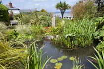 Fish pond in seaside garden, standing stone, phormium, bench, view to sea, Cordyline australis