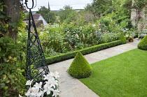 Formal cottage garden, lawn, box cone shape, obelisk, roses