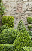Clipped box and holly shapes, wall plaque