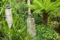 Pebbles placed on standing stones in tropical garden, Dicksonia antarctica, Wollemia nobilis, hemerocallis