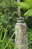 Wollemia nobilis, pebbles on standing stone, 'found' object sculpture