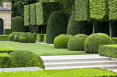 Pleached hornbeam standard cubes, clipped box hedges and yew shapes, steps leading to lawn