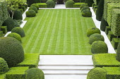 Overview of formal town garden with clipped box domes and cubes, Portuguese limestone paths around lawn with mowing stripes