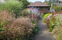 View along double borders to summerhouse, Limonium latifolium, Miscanthus sinensis 'Morning Light, phlomis seedheads, Perovskia atriplicifolia 'Little Spire', Persicaria 'Red Baron'