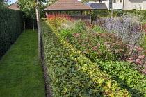 Clipped beech hedge, Eupatorium maculatum 'Laag', Astrantia 'Roma', Persicaria amplexicaulis 'Firedance', garden room, Perovskia atriplicifolia 'Little Spire'