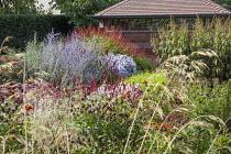 Garden room, Veronicastrum 'Fascination', Persicaria 'Red Baron', Perovskia atriplicifolia 'Little Spire', Persicaria amplexicaulis 'Firedance'
