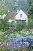 View to cottage, Aster 'Photograph', persicaria, anemones