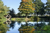 View across lake to wooden boathouse, reflection