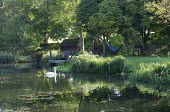 Chairs on jetty overlooking natural pond, hammock, swan