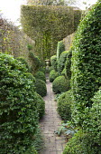 View along path towards urn flanked by topiary, archway clipped in hedge