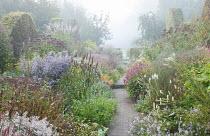 View along path through colourful perennial borders, Persicaria amplexicaulis, eupatorium, Aster 'Photograph', kalimeris, amsonia