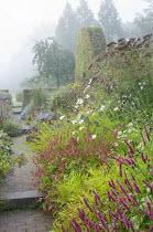 View along path through colourful perennial borders, Persicaria amplexicaulis 'Blackfield' and 'Anne's Choice', Carex muskingumensis 'Oehme', eupatorium, cosmos, solidago