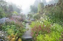 View along path through colourful perennial borders, Persicaria amplexicaulis 'Anne's Choice', cosmos, eupatorium, aster, kalimeris, amsonia