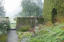 Enclosed prairie garden, Actaea simplex (Atropurpurea Group) 'James Compton', Persicaria campanulata, aster, persicaria, geranium, clipped hornbeam hedges, apple tree