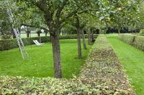 Apple orchard in clipped hornbeam hedge enclosure, deckchairs, ladder, garden 'room'