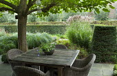 Willow chairs around wooden table under tree, Miscanthus sinensis, yew hedge
