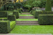 Formal garden, brick steps, clipped box and yew hedges