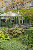 Table and chairs under umbrella on patio by house with shutters, Darmera peltata, clipped box hedges, Koelreuteria paniculata