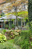 Table and chairs under umbrella on patio by house with shutters, Darmera peltata, tricyrtis, clipped box hedges, Koelreuteria paniculata