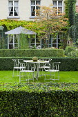 Metal table and chairs on lawn in clipped box hedge enclosure, garden 'room', Koelreuteria paniculata