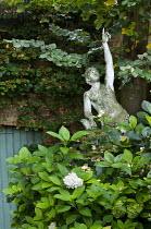 Pointing statue, hydrangea