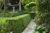 Clipped hedge forming a garden 'room'